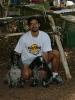 Vivo d'Orcia - 2004